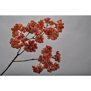 BRANCHE BERRY ORANGE 41CM