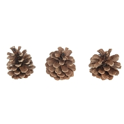 POMME PIN NATURELLE 250GRS