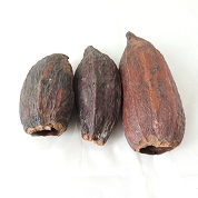 CACAO FRUIT NATUREL X 10