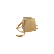 SAC CAPTURE NATUREL 13 X 13 HT 13CM ( X10 )