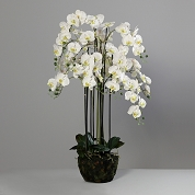 ORCHIDEE BLANCHE 140CM
